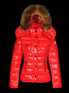 Women′s Down Jacket, Customized Sizes Accepted