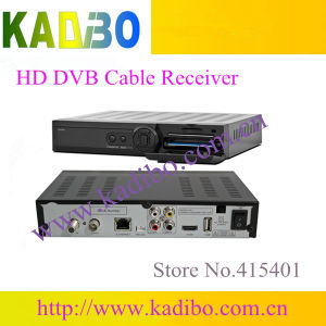 Excellent Singapore Set Top Box for Starhub Channels Cable TV Receiver  Support Cccam Network Sharing