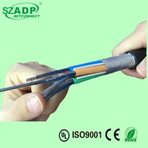 Aerial and Duct Singlemode G652D Ribbon Fiber Optic Cable Gydta pictures & photos