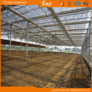 Modern Design High Light Transmittance Glass Multi-Span Greenhouse pictures & photos