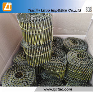 Supply Common Coil Nails Coil Framing Nails Factory pictures & photos