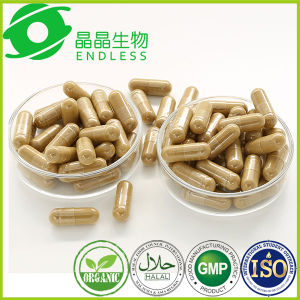 Silymarin Capsules Supplement Milk Thistle Extract Capsule Liver Support Supplement pictures & photos