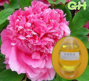 100% Natural Peony Seed Oil (Paeonia suffruticosa)