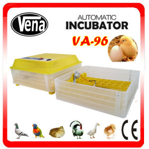 Birth Best Seller Automatic High Quality Quail Egg Incubator pictures & photos