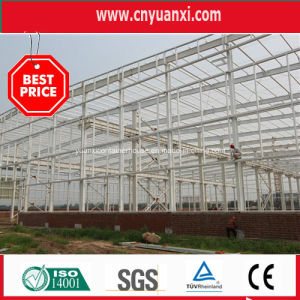Single Floor Prefabricated Steel Structure Building for Warehouse