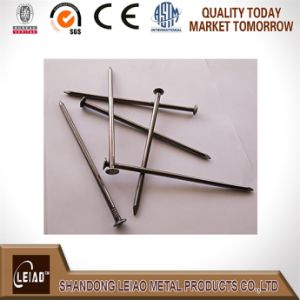 Iron Nail for Wood pictures & photos