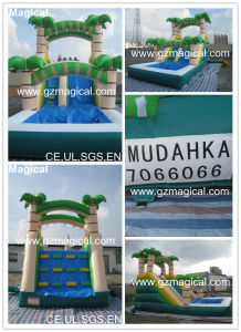 Cheap Kids Toys Park Small Pool Inflatable Water Slide (MIC-349) pictures & photos