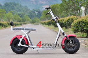 Big Wheel Electric Scooter Citycoco 2000W Hot Sell in 2017 pictures & photos