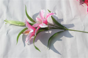 The Multicolor Artificial Lily Flowers for Home Decoration pictures & photos