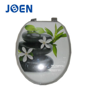 Stone Design Printing Moulded Mold Wood Toilet Seat pictures & photos