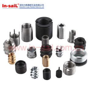 Ldin7965 Fastener Stainless Steel M6 Thread Insert Self Tapping Manufacturer pictures & photos