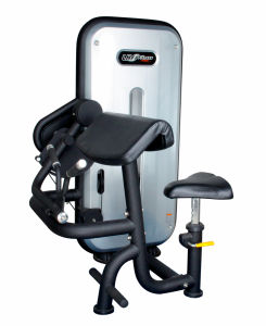 (Seated) Bicep Curl Machine (LH-B16)