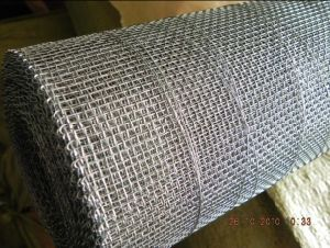 Top Quality Galvanized Crimped Wire Mesh