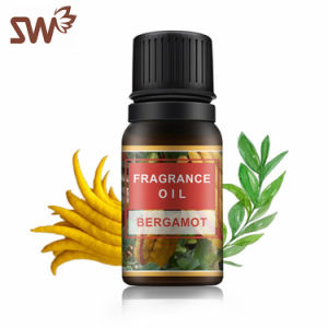 China Scent Fragrance Oil, Scent Fragrance Oil Wholesale