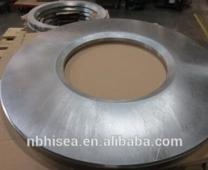 Ring Flange Seal pictures & photos