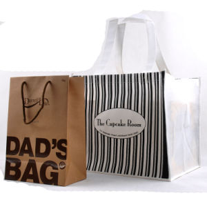 Recyclable Paper Shopping Bag (PG-00010)