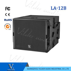 Single 12 Inch Line Array Subwoofer