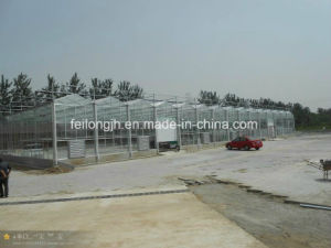 Hot Sale Galvanized Steel Skeleton for Greenhouse From China Factory