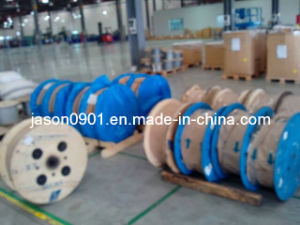 Carbon Steel Wire pictures & photos