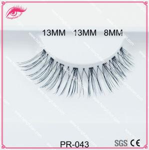 9f401bb8bc3 China Human Hair Lashes With Wholesale False Eyelash Packaging