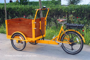 Foldable Electric Cargo Bicycle with Ce pictures & photos