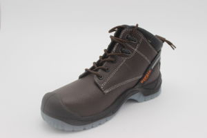 Whenzhou Cheap Safety Shoes Supplier pictures & photos