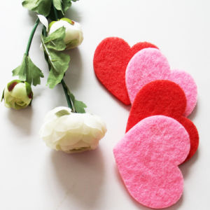 Lovely Shape Cleaning Scouring Pad