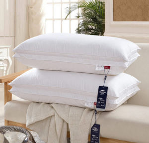 100% Cotton/100% Polyeater Comfortanle Pillow pictures & photos