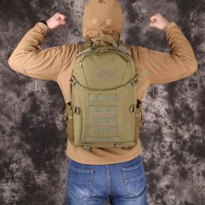 Outdoor Day Pack Tactical Assault Molle Rucksacks Waterproof Expandable Military Tactical Backpack pictures & photos