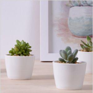Decorative Mini White Ceramic Flower Pots Round