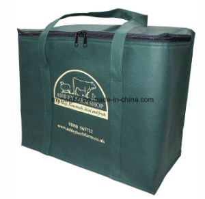 Foldable Freeze PP Non Woven Cooler Bag pictures & photos