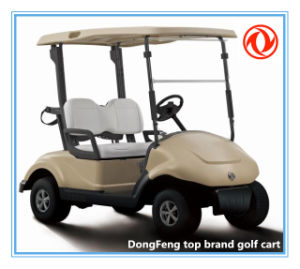 Street Legal 2 Seat Electric Golf Cart with Power-Assisted Steering