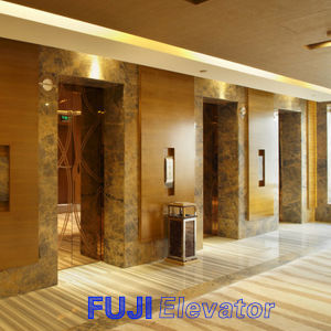 FUJI Passenger Elevator with Hairline Stainless Steel pictures & photos