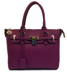 Guangzhou Suppliers Designer Handbag Designer Replica Handbags of Women (1693)