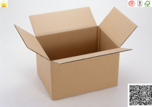 Cartons/Shipping High Quality Custom Corrugated Carton Box pictures & photos