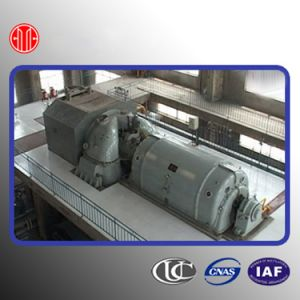 Coal-Fired Power Plant Steam Turbine 1 MW pictures & photos
