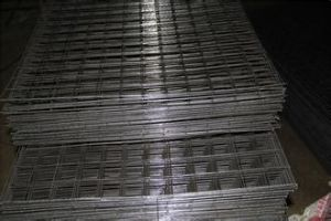 Black Welded Wire Mesh (4mm, 5mm) pictures & photos