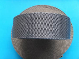 Factory High Quality PP Webbing pictures & photos