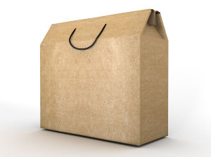 Wholesale Recyclable Promotional Paper Gift Bags for Gifts (FLP-8954)