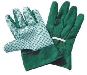 Cotton Gloves pictures & photos