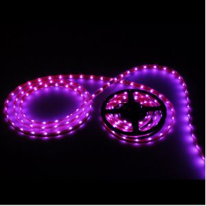 LED Strip Light (LH-5050-60P-12V)