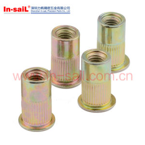 DIN Standard Flat Head Full Hex Body Blind Rivet Nut pictures & photos