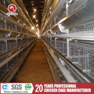 3.0mm Thickness Poultry Farm Battery Cage for Kenya Farm pictures & photos
