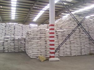 Gray Granular Calcium Superphosphate for Fertilizer pictures & photos