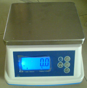 Electronic Weight and Counting Scale (ACS-I)