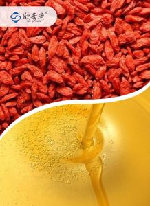 Natural Wolfberry Lycium Chinense Goji Seed Oils