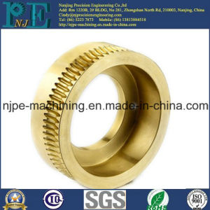 ISO9001 Certificated Factory OEM Brass Precision Machining Worm Gear