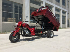 Tricycle with 2 Ton Loading (TR-4) pictures & photos