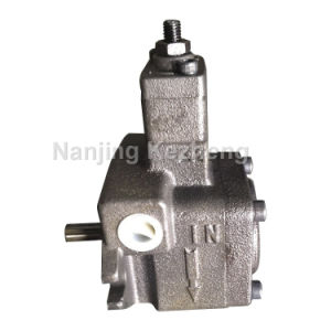 Variable Vane Pump (China Manufacturer)