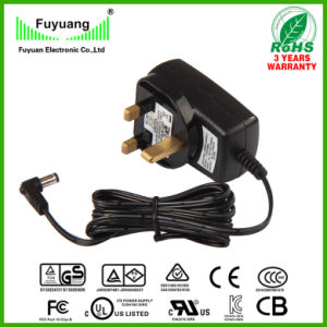3 Cell Li-ion Battery Charger 4.2V0.3A (FY0420300) pictures & photos
